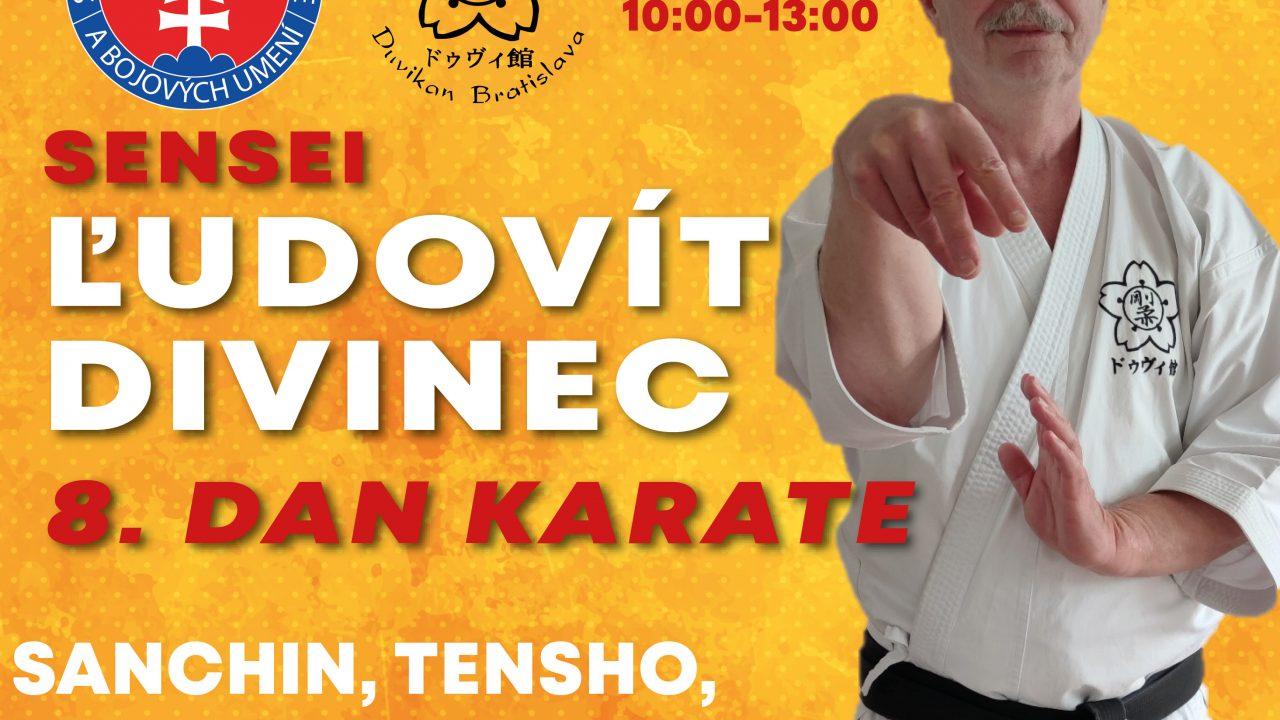 https://karate-slovakia.sk/wp-content/uploads/Divinec_seminar-1280x720.jpg