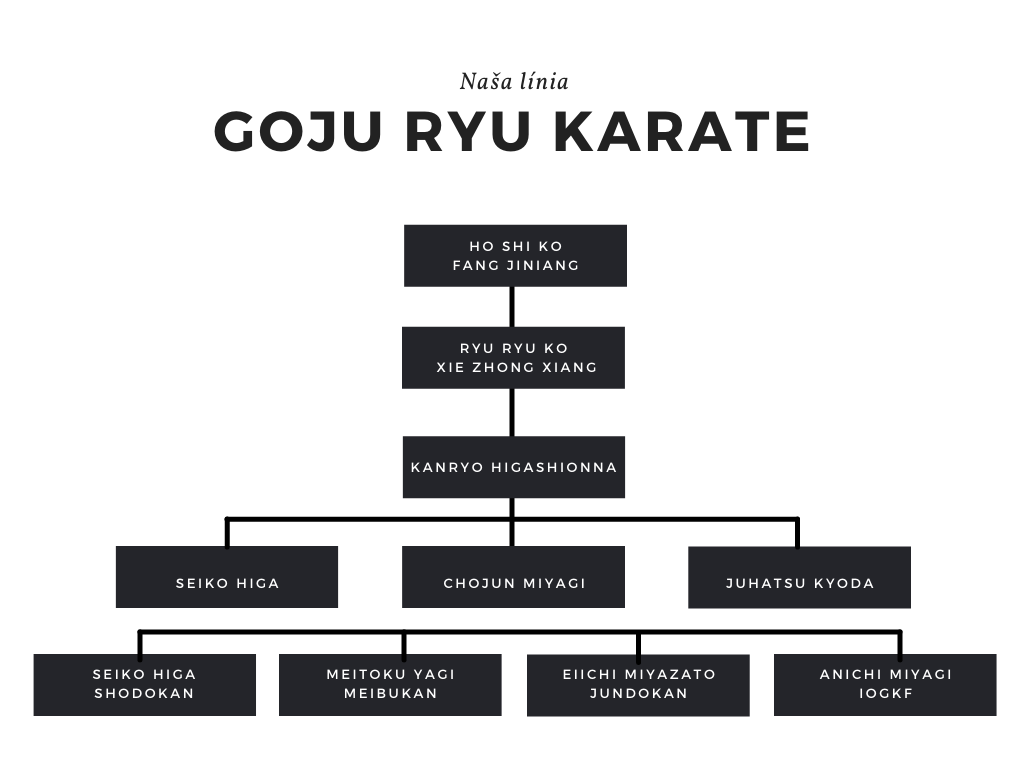 https://karate-slovakia.sk/wp-content/uploads/Shodokan-Goju-Ryu-2.png